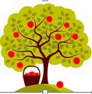 Fruitbomen snoeidag 2019